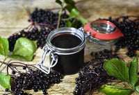 History of Black Elderberry for Medicinal Use