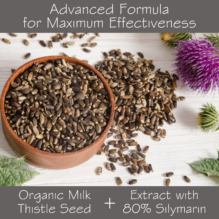 Seeds of Silymarin spread out as part of our organic milk thistle formula.