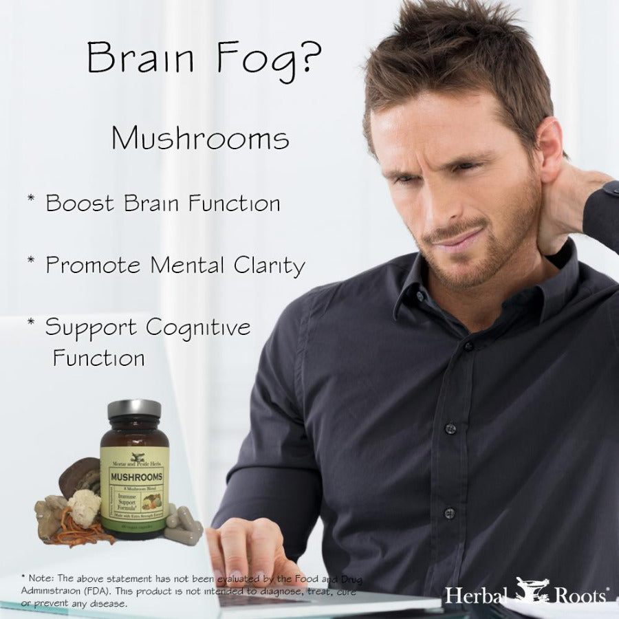 Braing fog infographic, boost brain function, promote mental clarity, support cognitive function.