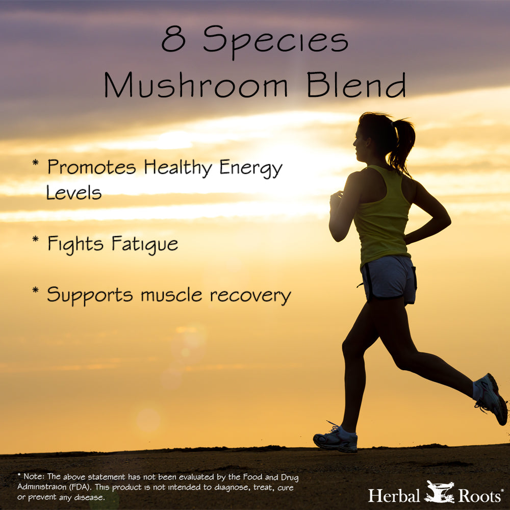 A woman running with a nice sunset on the background. 8 Species mushroom blend promotes healthy energy, fights fatigue and supports muscle recovery infographic.