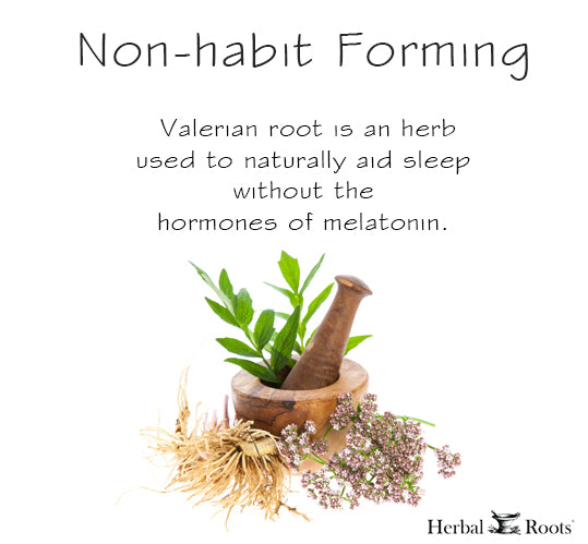 A mortar and pestle with valerian leaves, an infograhic with a content that says: valerian root is a herb used to naturally aid sleep without the hormones of melatonin.