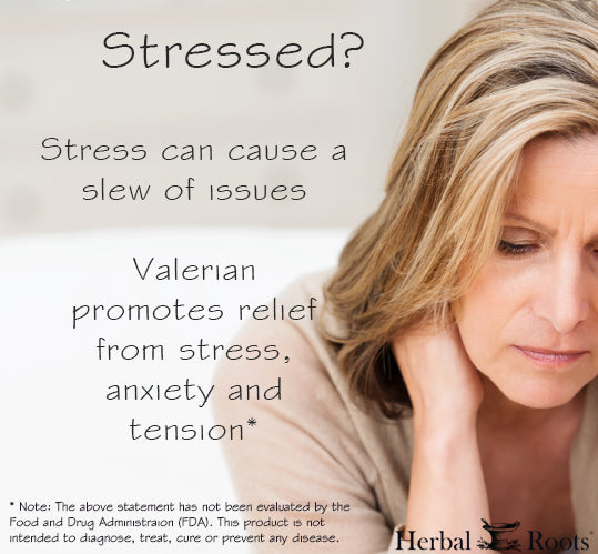 Infographic with a woman showing stress and a content explaining how valerian root promotes relief from stress.