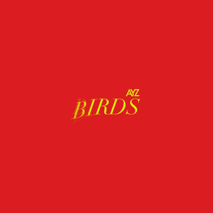BIRDS EP (LIMITED COLLECTORS EDITION) - AYZWARAICH.COM