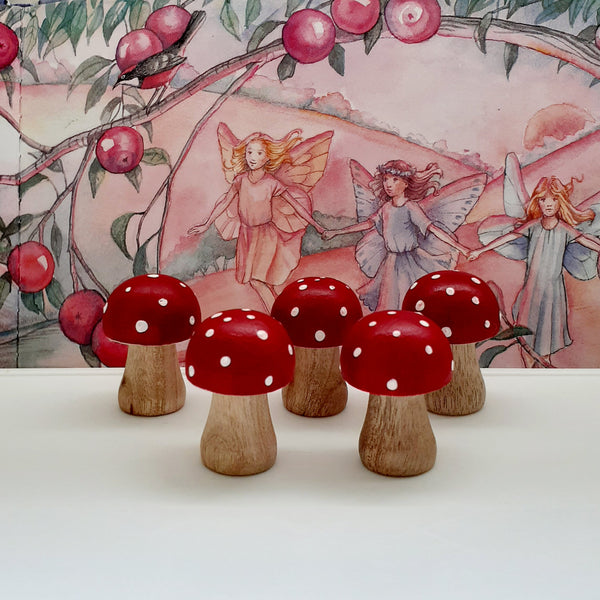 Mini Wooden Mushrooms - set of 5, small world, fairy garden, open ended play, early learning resources, montessori, waldorf, homeschool
