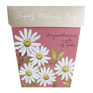 Sow N Sow - Chrysanthemums Mother's Day Gift of Seeds