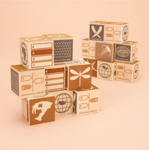 Uncle Goose - Wooden Block Set - Fossils