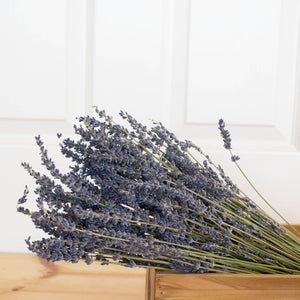 French Lavender Bundle