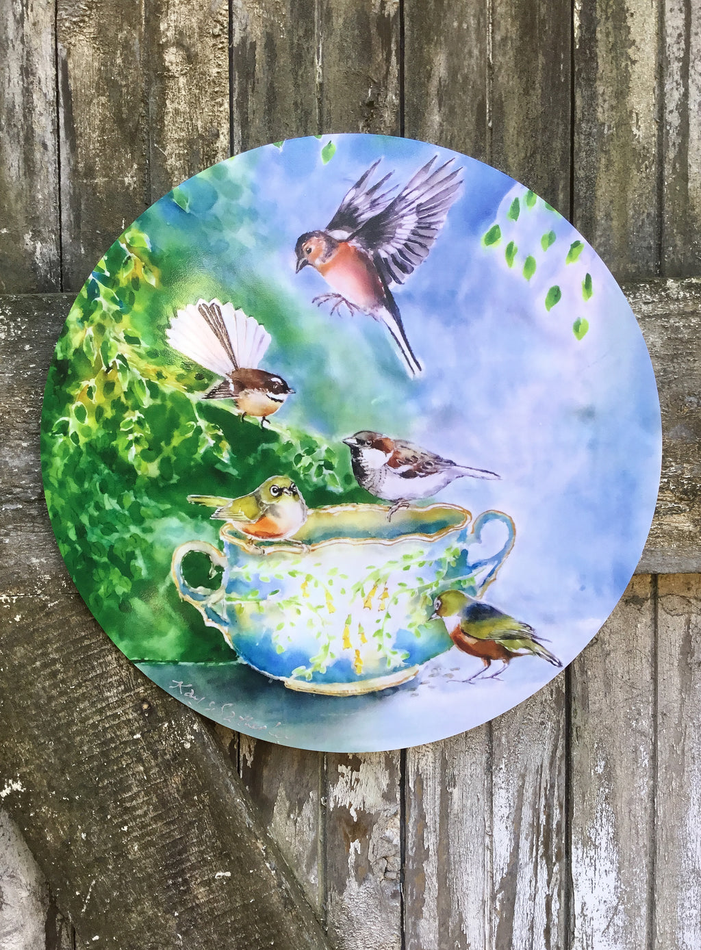 Small birds, SilverEyes, Chaffinch, Fantail and Sparrow on Vintage China - Circle Outdoor Art Panel
