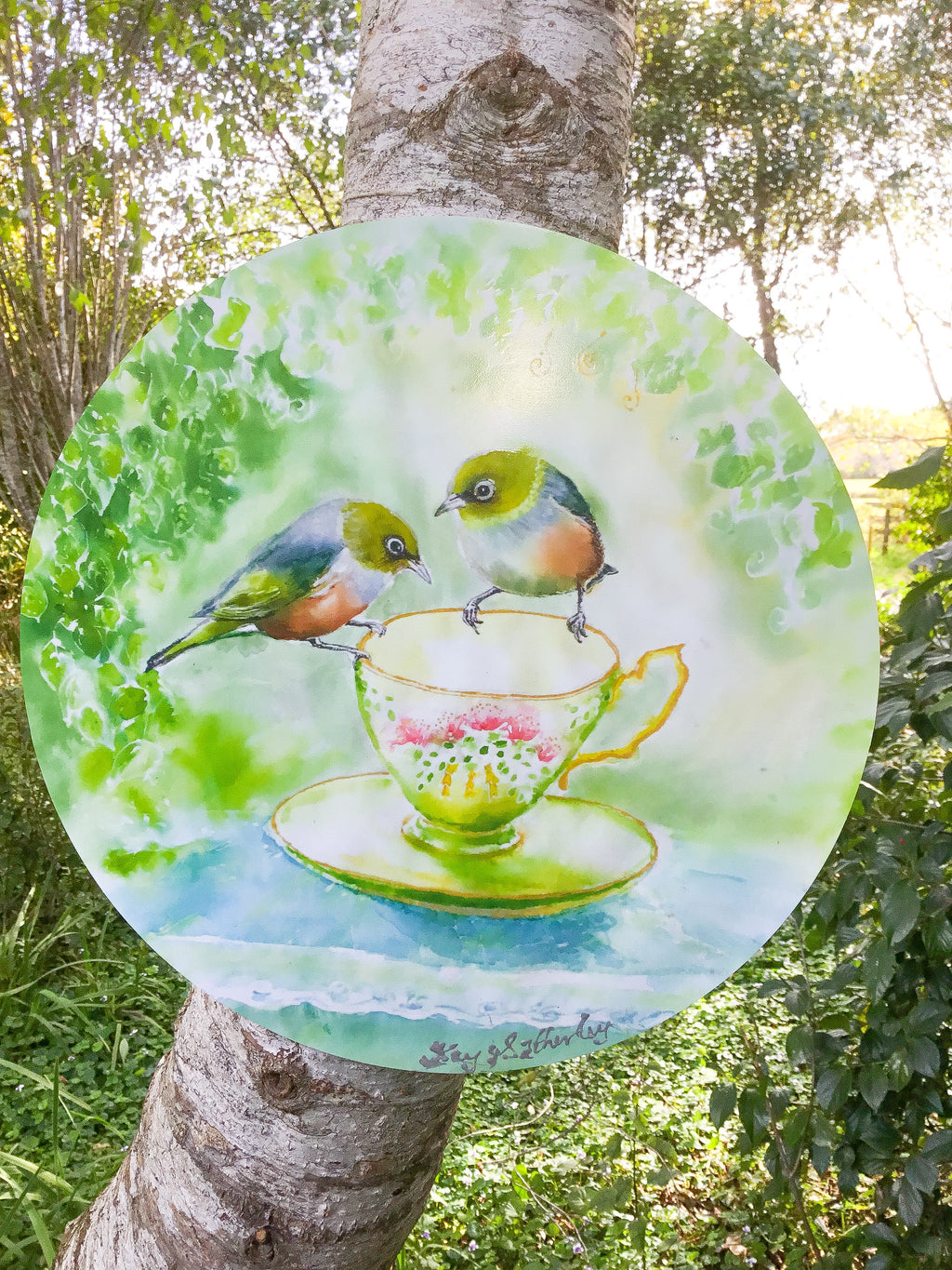 SilverEyes on Teacup - Circle Outdoor Art Panel - Satherley Silks NZ