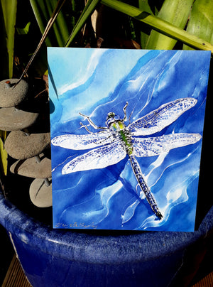 Dragonflies  Art Panel,  Outdoor Wall Art. - Satherley Silks NZ