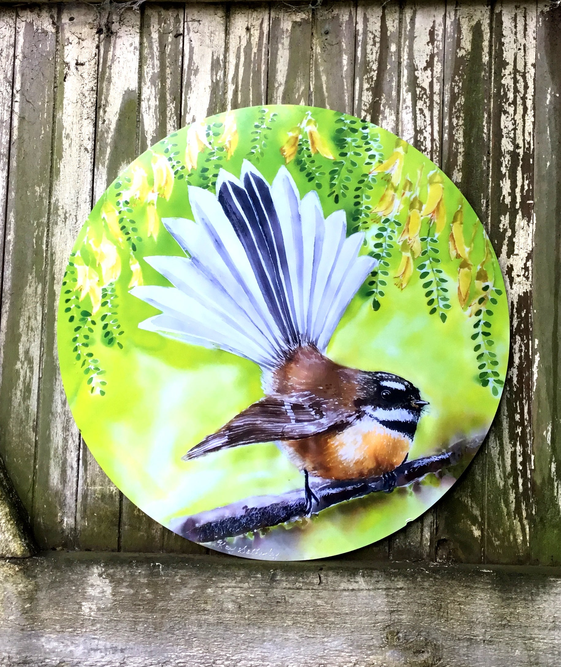 Fantail New Zealand Bird - Circle Outdoor Art Panel - Satherley Silks NZ