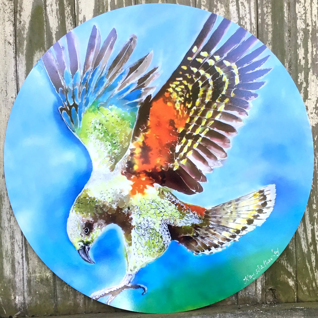 Kea Bird, NZ Alpine Parrot, Outdoor Circle Art Panel - Satherley Silks NZ