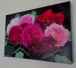 Original Photo on Canvas - Roses 2