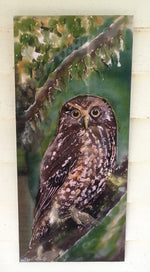 New Zealand Native Owl, Ruru - Outdoor Garden Art Panel - Satherley Silks NZ