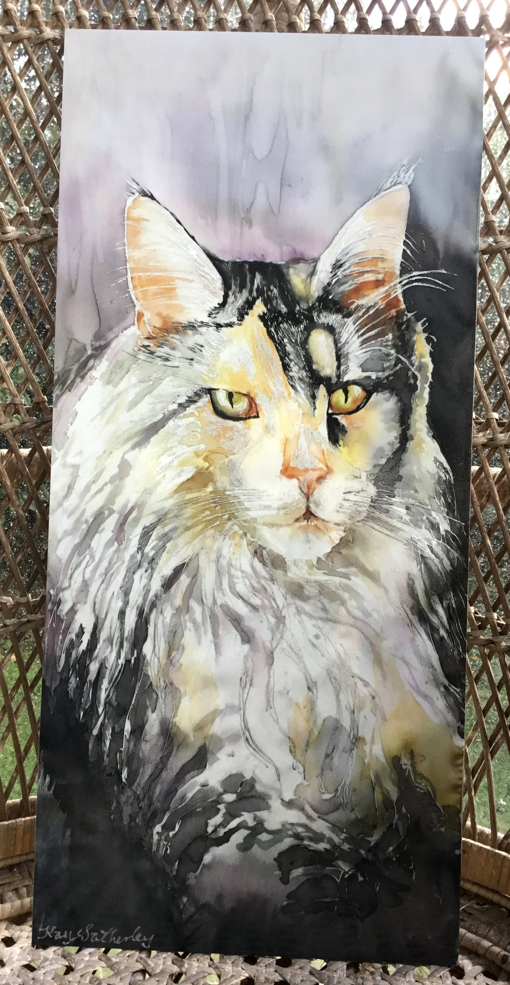 Maine Coon Cat Portrait - Outdoor Panel - Satherley Silks NZ