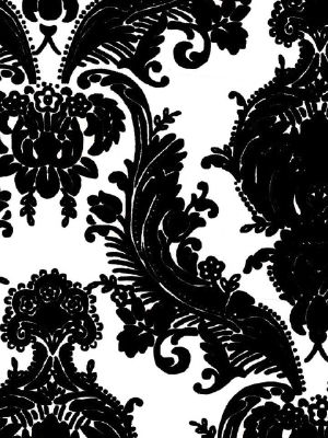 Black Flock Damask on White Background