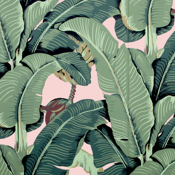 The Iconic Beverly Hills™ Banana Leaf Wallpaper - Brentwood Blush - Designer Wallcoverings and Fabrics
