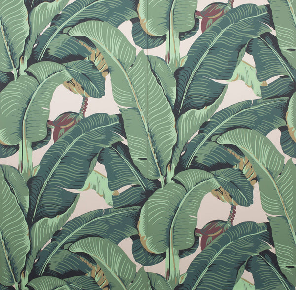The Iconic Beverly Hills™ Banana Leaf Wallpaper - Classic Green - Designer Wallcoverings and Fabrics