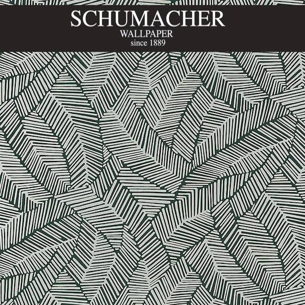 Authorized Dealer of 5007534 by Schumacher Wallpaper at Designer Wallcoverings and Fabrics, Your online resource since 2007
