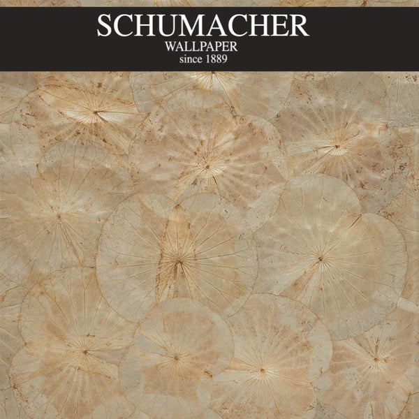 Authorized Dealer of 5009660 by Schumacher Wallpaper at Designer Wallcoverings and Fabrics, Your online resource since 2007