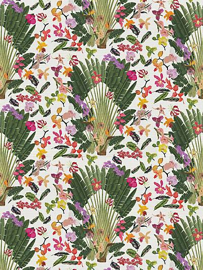 FANTASY TROPICAL - WHITE - NICOLETTE MAYER WALLPAPER - WNM0001TROP at Designer Wallcoverings and Fabrics, Your online resource since 2007