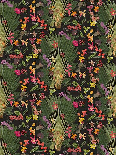 FANTASY TROPICAL - BLACK - NICOLETTE MAYER WALLPAPER - WNM0002TROP at Designer Wallcoverings and Fabrics, Your online resource since 2007