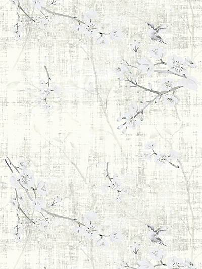 BLOSSOM FANTASIA - IVORY - NICOLETTE MAYER WALLPAPER - WNM1024BLOS at Designer Wallcoverings and Fabrics, Your online resource since 2007