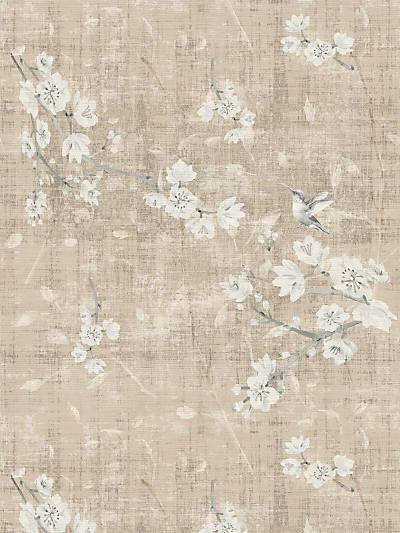 BLOSSOM FANTASIA - FRENCH GRAY - NICOLETTE MAYER WALLPAPER - WNM1050BLOS at Designer Wallcoverings and Fabrics, Your online resource since 2007