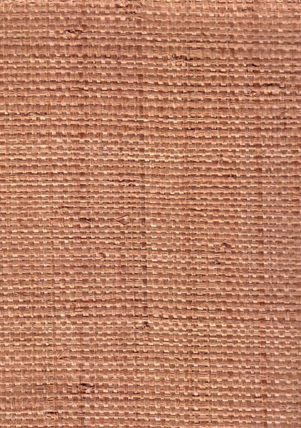 The Original Heavy Madagascar Cloth Raffia - Taupe Honey