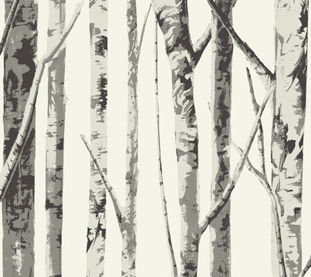 Bella Birch Trees - Charcoal Grey on White