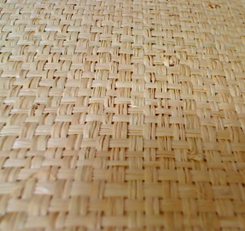 Mondo Madagascar Wall Paper - Natural Straw Honey