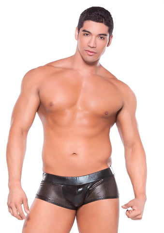 Mens Wetlook Shorts - Fetshop