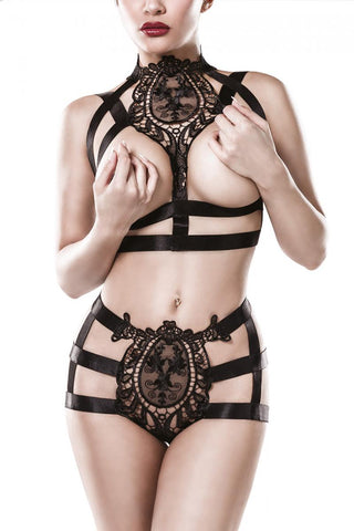 Grey Velvet Two-Part Harness Set