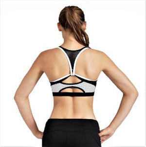Navy and White Beehive Sports Bra