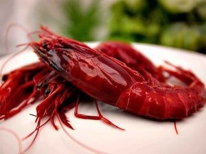 Carabinero Grande - Big Red King Prawns