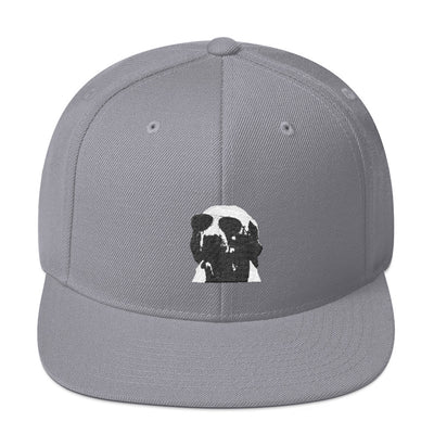 SportsMarket Premium Clothing Line-Coolest Dog Snapback Hat