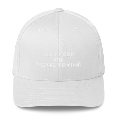 SportsMarket Premium Clothing Line-Live Free or Diesel Trying Fitted Twill Cap