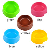 Candy Color Pet Feeding Bowl - My Bengal Boy