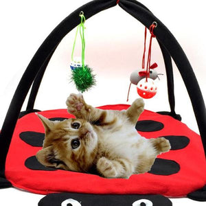 Beetle Cat Mat