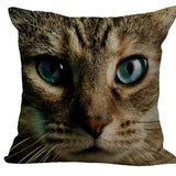 Cat Pillow - Lunani's Fashion Book | Fashionable and reasonable dresses and shoes!