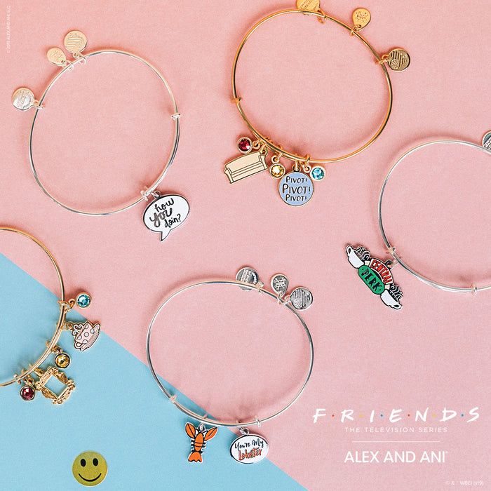 "Alex And Ani's ""The Friends Collection"" Now Available at Time After Time"