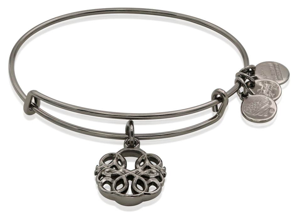 Alex and Ani PATH OF SYMBOLS-PATH OF LIFE IV BANGLE MIDNIGHT SILVER