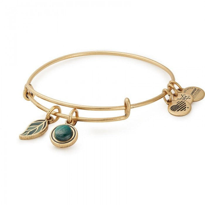 Alex and Ani Grounded Duo Charm Bangle, Gold Finish