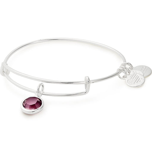 Alex and Ani Amethyst Birthstone Charm Bangle With Swarovski® Crystals Shiny Silver