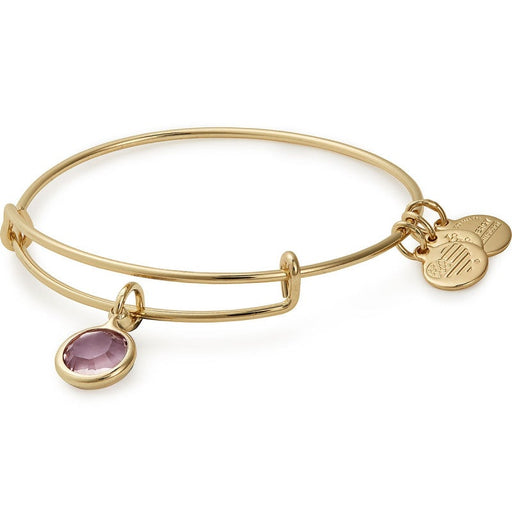 Alex and Ani Light Amethyst Birthstone Charm Bangle with Swarovski® Crystals Shiny Gold