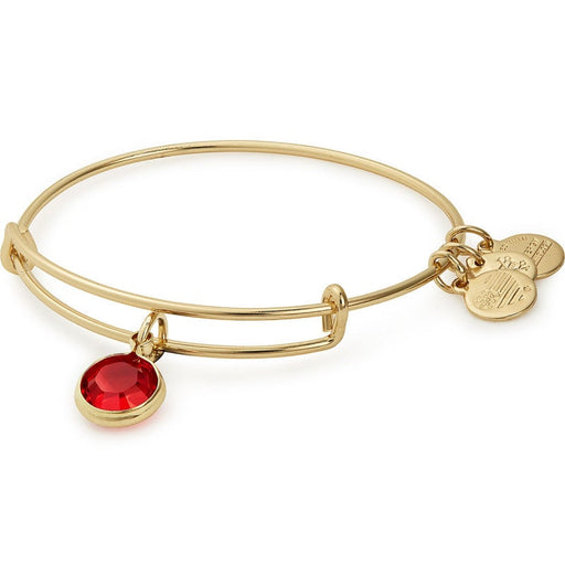 Alex and Ani Light Siam Birthstone Charm Bangle With Swarovski® Crystals Shiny Silver