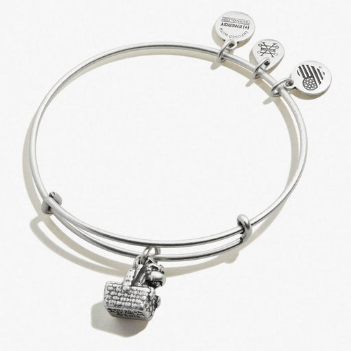 Wizard of Oz Toto Charm Bangle RAFAELIAN SILVER