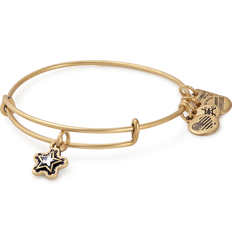 Alex and Ani True Wish Charm Bangle | Make-A-Wish Foundation