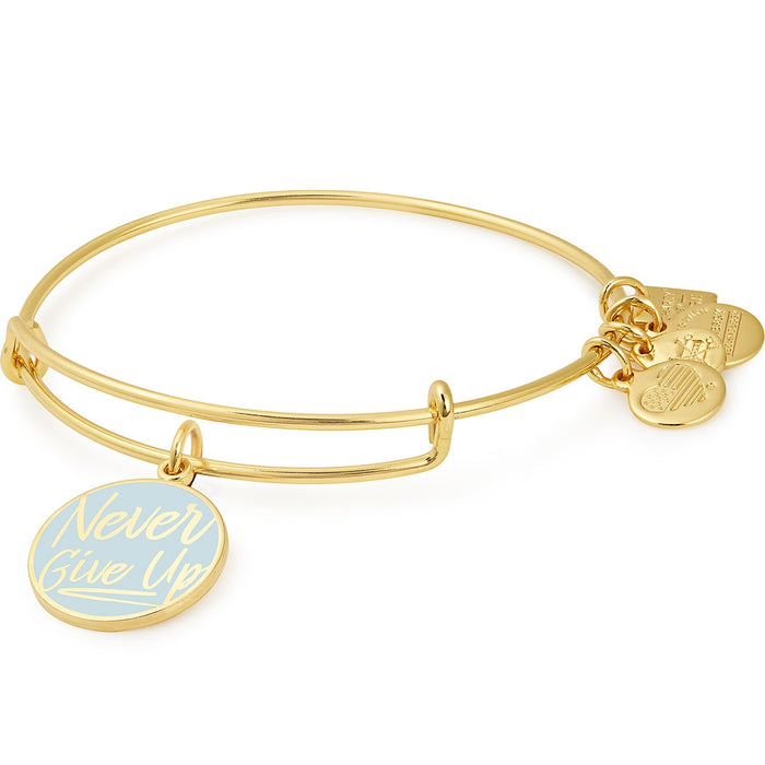 Alex and Ani Never Give Up Charm Bangle | Pan-Mass Challenge