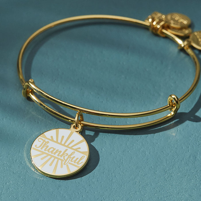 Alex and Ani Today is a Gift Charm Bangle | Team Red, White, And Blue